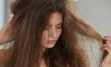 Rambut Kering. Ilustrasi
