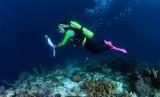 saat obor Asian Games tiba di Raja Ampat, Papua. Obor tersebut dibawa menyelam ke dalam laut Raja Ampat tepatnya di Paynemo oleh istri Kapolri, Tri Suswati Karnavian.