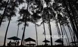Salah satu obyek wisata di Bengkulu, Pantai Panjang.