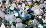Diperkirakan 570 ribu kepiting pertapa mati setelah terperangkap dalam puing plastik. Ilustrasi.
