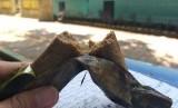 Sate gepuk ikan tongkol khas Kepulauan Seribu.