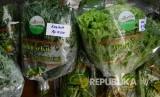 Sayuran dan obat dari hasil penanaman sistem organik pada cara workshop Amazing Nature Hidup Sehat dengan Berkebun Organik dan Tanaman Obat Keluarga (TOGA) yang digelar Syamsi Dhuha Foundation (SDF) di Kota Bandung (Ilustrasi)