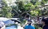 Sejumlah kendaraan rusak tertimpa pohon di halaman depan RSUD Syamsudin SH Kota Sukabumi akibat diterjang angin kencang Kamis (26/4) pagi.