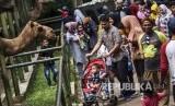 Bandung Zoological Garden alias Kebun Binatang Bandung, Jalan Tamansari, Kota Bandung, Jawa Barat. Akhir pekan ini, bertepatan dengan perayaan Imlek, Kebun Binatang Bandung akan tampilkan atraksi barongsai.