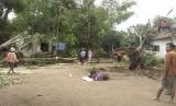 Sejumlah rumah warga rusak tertimpa pohon (ilustrasi)