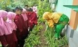 Sekolah Dasar Islam (SDI) As Shofa, Pekanbaru, Riau tahun ini menerima penghargaan dari Kementerian Lingkungan Hidup dan Kementerian Pendidikan dan Kebudayaan sebagai sekolah Adiwiyata Nasional 2017.