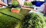 Rujak Daun, Makanan Khas Berbuka Puasa di Aceh. Seorang pedagang mengiris aneka dedaunan untuk membuat makanan khas Ramadhan khas Aceh, Seunicah Oen (Rujak Daun) yang dijual hanya pada bulan suci Ramadhan di kawasan pusat pasar Jeuram, Kecamatan Seunagan, Kabupaten Nagan Raya, Provinsi Aceh, Senin (18/5).