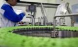 Seorang staf tengah memeriksa vial vaksin flu babi H1N1 yang diproduksi BUMN Cina, Sinovac yang berbasis di Beijing
