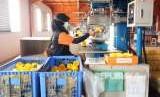 Puluhan Perusahaan di Banten Keberatan dengan UMK 2020. Foto ilustrasi buruh di pabrik.