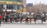 Suasana keramaian kota di Uighur.