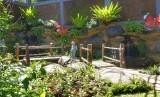 Taman Kupu-kupu kemenuh Butterfly Park yang berada di Jalan Raya Kemenuh, Sukawati, Kabupaten Gianyar, Bali.