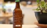 Kombucha atau sejenis ramuan teh dikenal sebagai penyembuh berbagai macam penyakit (Ilustrasi)