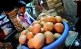 Telur ayam negeri