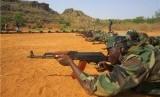 Tentara Mali (ilustrasi)