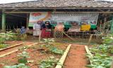 Tim penggerak Rumah Zakat Desa Berdaya Caracas bersama ketua Kelompok Wanita Tani (KWT) Motekar Diri (Mojang Tatanen Kareo Mandiri) Edah, melakukan pertemuan di kebun percontohan, Jum'at (7/8).