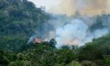 Ilustrasi titik panas kebakaran lahan di Sumatra.