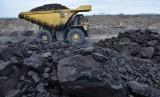 Truk membawa batubara di area pertambangan PT Adaro Indonesia di Tabalong, Kalimantan Selatan. ilustrasi