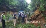 Evkuasi pohon tumbang (ilustrasi)