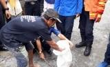 Warga dan petugas Damkar melakukan evakuasi ular (Ilustrasi).
