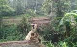 Warga melintas di jembatan darurat di Desa Indrajaya, Kecamatan Sukaratu, Kabupaten Tasikmalaya, Sabtu (29/2). Jembatan darurat itu berada sekira 200 meter dari jembatan utama di Desa Santanamekar, Kecamatan Cisayong, yang tertimbun longsor yang terjadi pada Jumat (28/2).