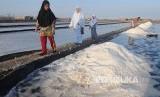 Saat kondisi normal tanpa pandemi corona, warga dapat menikmati panorama lahan garam di Desa Bunder, Pamekasan, Jawa Timur.
