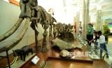 Wisata Museum Geologi Seorang anak bersama orangtunya mengamati fosil hewan purbakala di Museum Geologi, Jalan Diponegoro, Kota Bandung, Selasa (3/1).